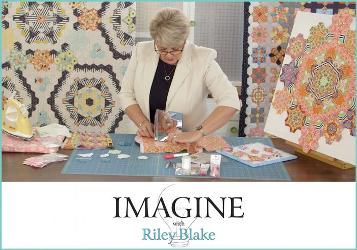Sue Fussy Cutting IMAGINE