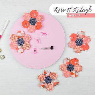 Rose of Kaleigh Step 10