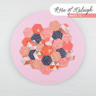 Rose of Kaleigh Step 12