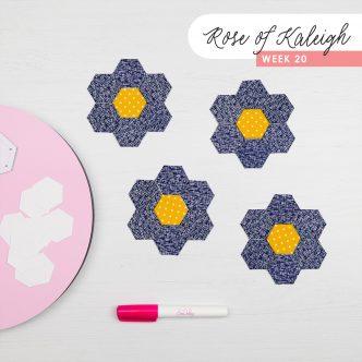 Rose of Kaleigh Step 20