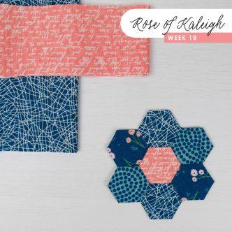 Rose of Kaleigh Step 18