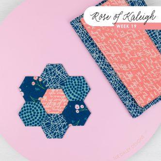 Rose of Kaleigh Step 19